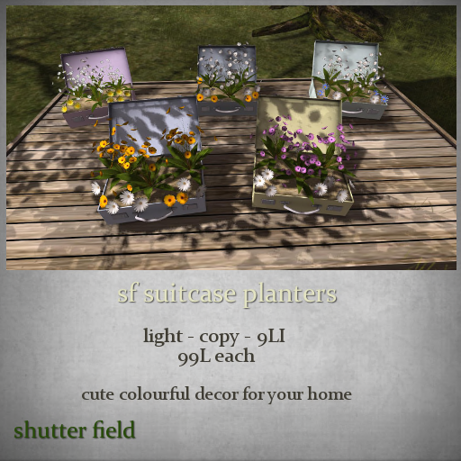 sf suitcase planters - light - ad